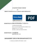 Summer Internship Project Report Print