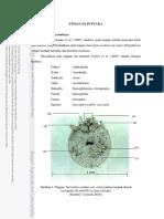 BAB II TINJAUAN PUSTAKA IPB 56405.pdf