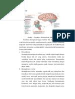 anatomi PBL 1 NSS.docx