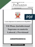 Vll Pleno Jurisdiccional Supremo Laboral y Previsional