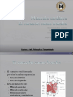 musculo-cardiaco03.ppt