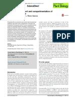 Transporte Intracelular y Compartimentación de Fosfato en Plantas