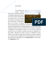 Los Ecosistemas Locales  REYKJAVIK