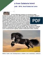 2014 Anul Calului de Lemn