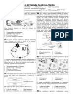 (7º Ano) Avaliação - Poríferos, Cnidários, Platelmintos, Nematóides e Anelídeos2.doc