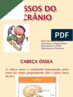 3ª+Aula+Ossos+do+Cranio+PDF-1