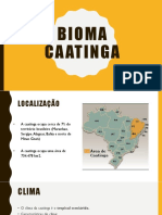 BIOMA - caatinga