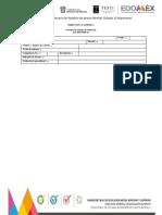 Formato de Evidencia_2018-2