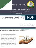 GARANTIAS CONSTITUCIONALES[794]