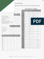 261663069-Brunet1-Jpeg.pdf