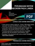 Kelompok 7. Perubahan Sistem Endokrin Pada Lansia