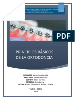 Informe 1 Principios Básicos de La Ortodoncia