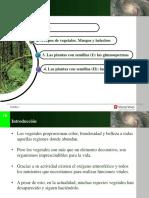 Datenpdf.com Historia Denominacional Orientador