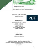 Paso 3.1 - Diseñar Alternativas de PML en La Organización