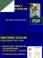 Clase 1 - Oftalmo - Anatomía y Fisiología