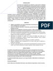 Fundicion Informe Final