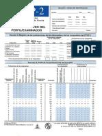 237840659-PROTOCOLO-FROSTIG.pdf
