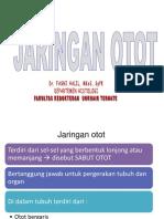 5. JARINGAN OTOT