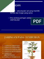 Biology - Jaringan.ppt