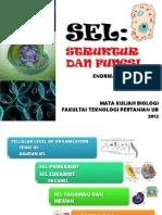 3.struktur-dan-fungsi-sel.pdf