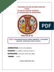 BOTADERO DE HAQUIRA.docx