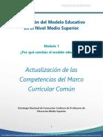 pdf_competencias_AME_M1.pdf