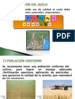 PRODUCCION SEMILLAS PARTE 2.ppt