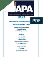 Braudenis-Mercedes-Perez-Hodge-Tarea-VII-y-VIII-UAPA.docx