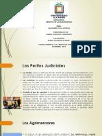 Los Peritos Judiciales