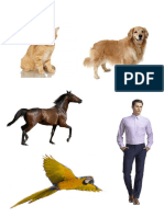 Gambar KPSP