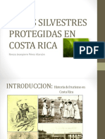 ANP COSTA RICA.pptx