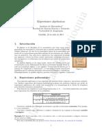 Exp-algebraicas.pdf