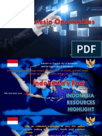 indonesian investment opportunities 1.pptx
