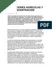 Dos Tendencias en Pugna en La Argentina