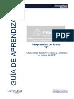Guia Interpretacion Del Anexo S