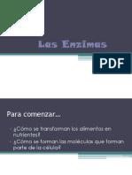 Las Enzimas 1ro m