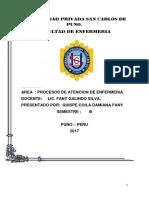 Universidad Privada San Cafrlos Puno Pae