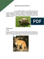 Departamentos de Guatemala Fauna