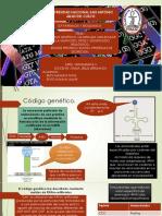 Codigo Genetico Final