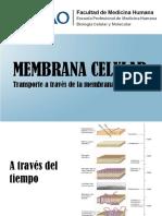 Membrana Celular Seminariox2