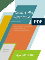 Ensayo Desarrollo sustentable