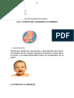 DESARROLLO SESION 01.docx