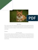 DESCRIPTIVE OF ANIMAL.docx