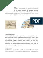 Ct Scan Thoracal Patologi