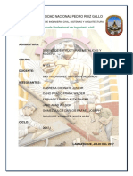 Informe Campo Madera