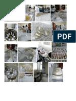 Gambar praktikum media padat dan pewarnaan bakteri.docx