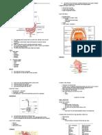 Gastro-intestinal System.doc