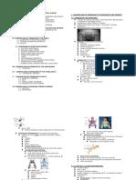 Musculoskeletal Diseases.doc