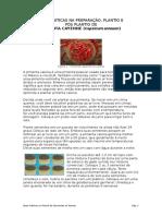 Boas Práticas Na Preparação, Plantio e Pós Plantio de Pimenta Cayenne
