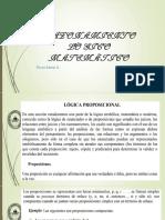 Diapositivas 1 RLM